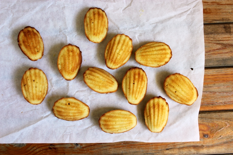 Lemon Cardamom Madeleines